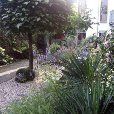Pflanzenverwendung Paradiesgarten